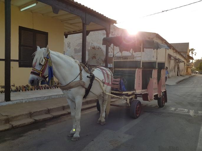 SL horse cart
