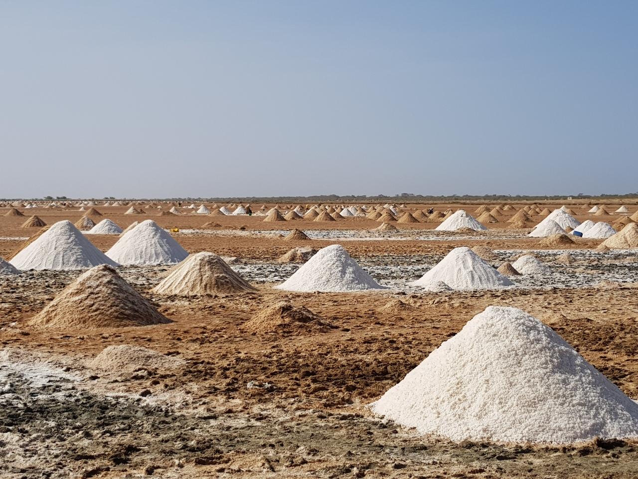 SL salt